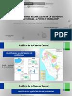 Analisis Cadena Causal (Ecosistemas)