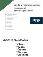 Clase 1, La Célula 2010