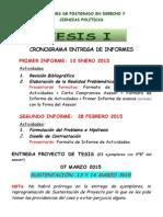 CRONOGRAMA TESIS I 2014-II.docx