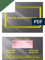 Aula 2 Coco Gram-positivos (Streptococcus e Enterococcus)