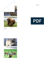 Fauna de Suiza y flora