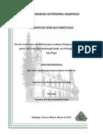 biomasa_jorullensis.pdf