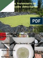 Sistemas deTratamiento de aguas domiciliarias.ppt
