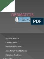 Diapositivas Dermatitis