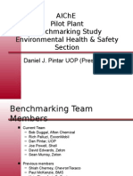 PP Benchmarking Survey - Safety