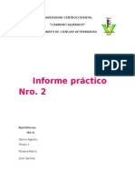 Informe Practico de Cerd12