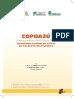 copoazu_germinacion