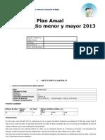 Plan Anual 2013 Niveles Medios San Juan