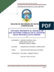 Estudio Mediante El Modelo de Los Sistemas Viables en El Hospital Felix Mayorca Soto Tarma