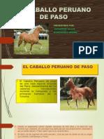 El Caballo Peruano de Paso1