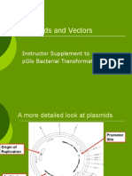 Plasmids and Vectors