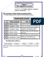 مذكرة شرح علوم الصف الرابع الابتدائي  لغات 2015 science for primary 4 second term 2015 Prim 4secondTERM2015