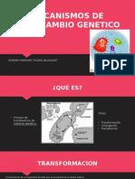 Mecanismos de Intercambio Genetico (1)