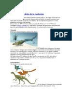 7 Eslabones Perdidos de La Evolución