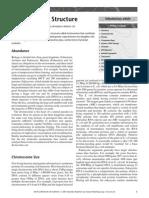 cromosomeStructure.pdf