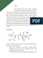 t Polipeptida