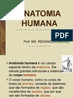 ANATOMIA HUMANA.ppt