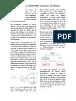 1. Fisiopatología I .pdf