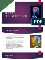 Modelo Fenomeologico