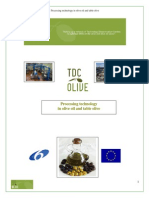 Processing Technology table olives