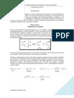 Lissette Ibáñez Castillo Pedagogía en Química y