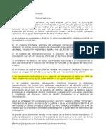LAS MEDIDAS CONSERVATORIAS.doc
