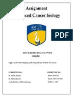 Molecular targeting and drug delivery system for cancer