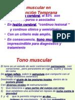 Tono muscular