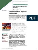 - Clarín Digital_Polémica sobre la propiedad de las riquezas del subsuelo
