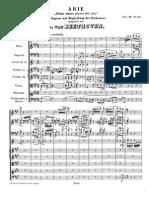 Primo Amore Piacer Del Ciel pdf