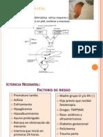 Ictericina Neonatal CTO