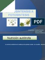 Quimiosistensis a Fotosintesis Listo