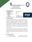 SILABO RFE IVA.docx