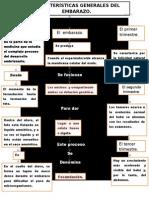 Características Generales Del Embarazo.