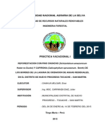 PRIMER INFORME DE PRACTICA .pdf