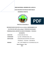 INFORME II.pdf