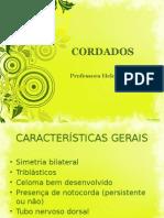 CORDADOS - 20A
