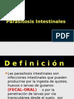 Parasitosis Intestinales2