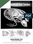 Wyneken The anatomy of sea turtle.pdf