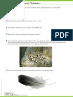 Natural+Science+1.+Extension+Worksheet.+Unit+2.pdf