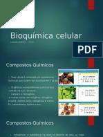 Aula 1 Bioquimica Celular Lucas Gomes