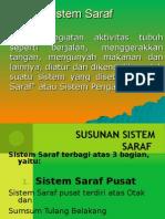 presentasisistemsaraf-130802073419-phpapp02.ppt