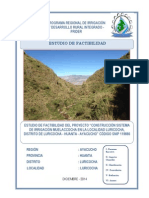 PIP A NIVEL FACTIBILIDAD-LURICOCHA-PRIDER.pdf