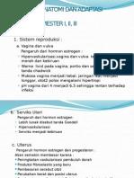 1. Perubahan Anatomi Dan Adaptasi Psikologi Ibu Hamil