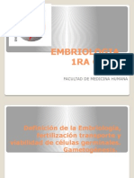 1ra- embrio_2