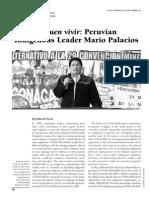 Sobre Mario Palacios - CONACAMI