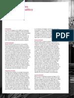 1Principios rectores del acto Analitico E Laurent.pdf