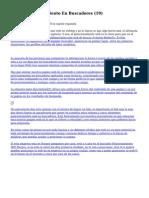 Article   Posicionamiento En Buscadores (19)