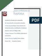 Criterios, Estandares e Indicadores Kika