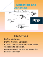 Natural Selection and Variation